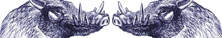 cinghialeviola