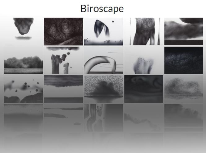 biroscapecover.jpg